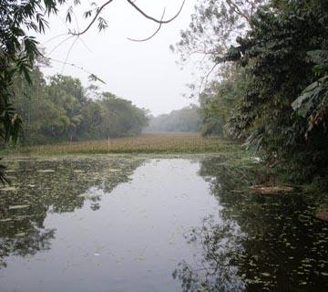 dakatia river